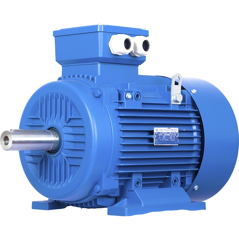 Motorelli Electric Motors Product Range Available